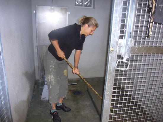 Encore du nettoyage